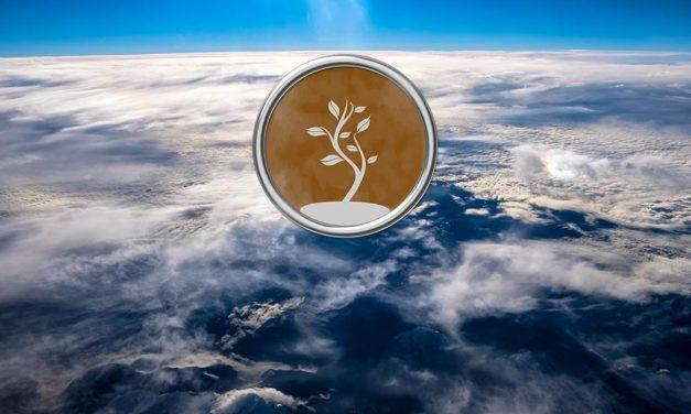 5 – Préserver la terre et les insectes