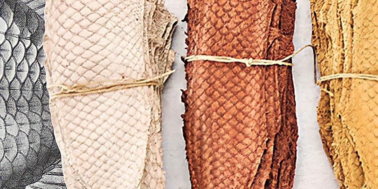 LEATHER FROM SEAFOOD WASTE