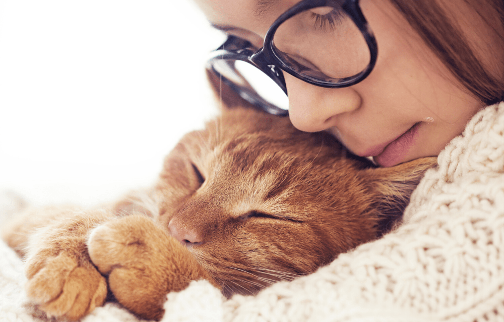 Les animaux, au secours de notre santé