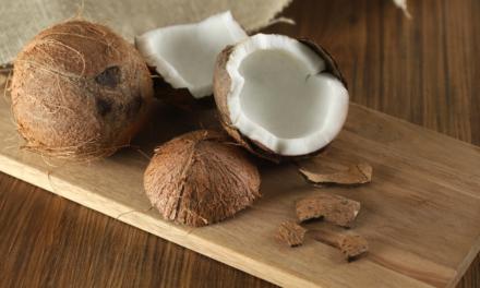 Des noix de coco pour des palettes écologiques