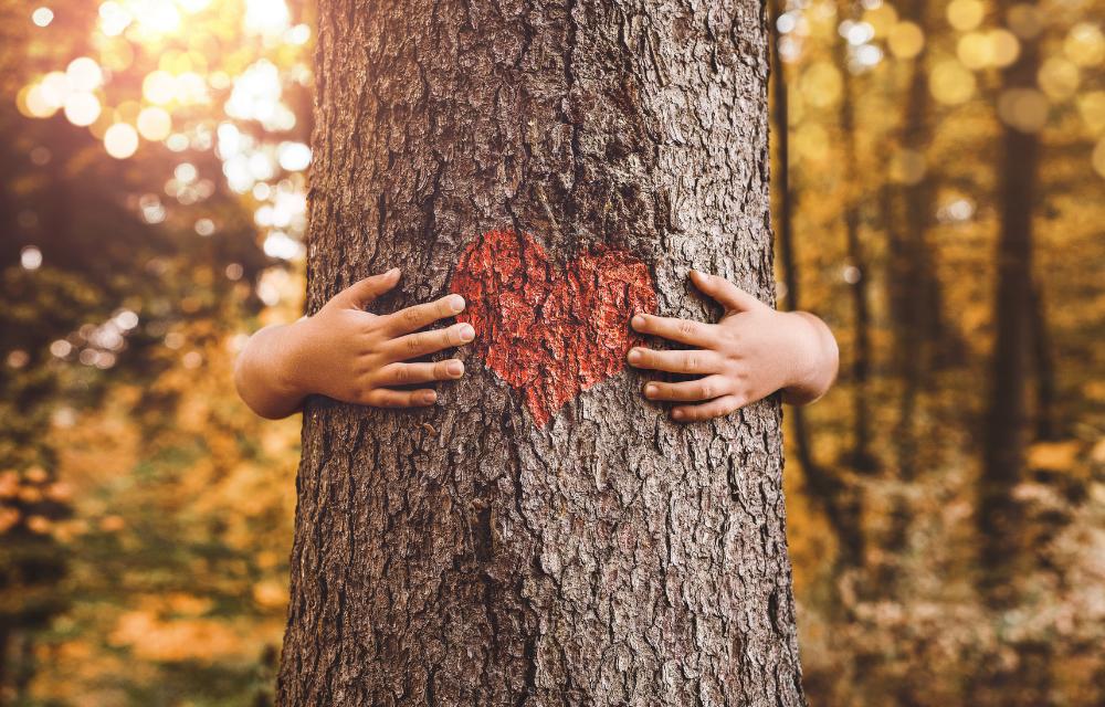 Le retour à la nature : Bienfaits