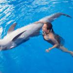 La delphinothérapie