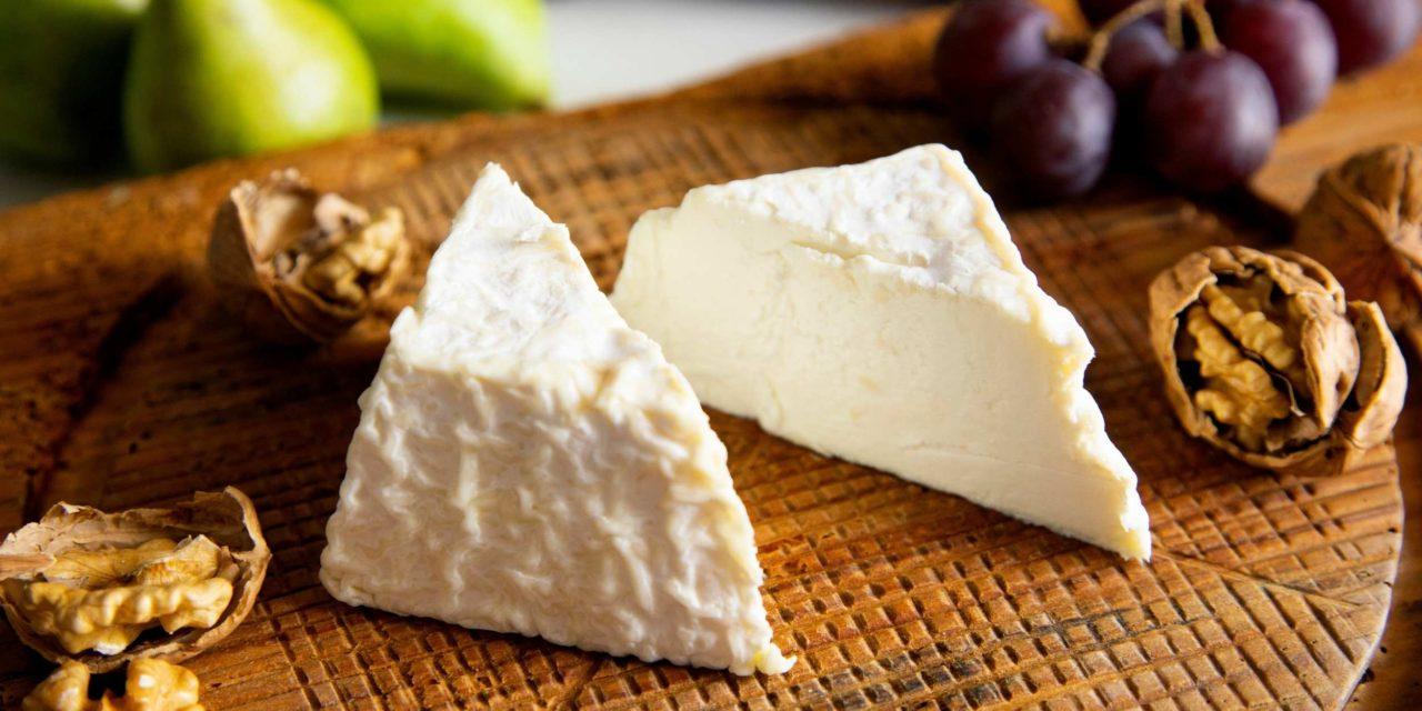 Le fromage végétal des nouveaux affineurs